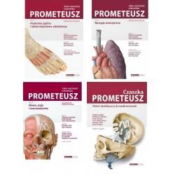 Pakiet: Atlas Anatomii Prometeusz - (3 tomy) + Pakiet CZASZKA