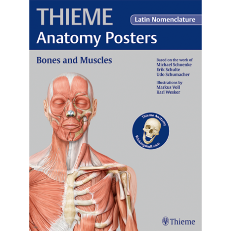 Plakat Anatomy Poster Prometheus Bones and Muscles